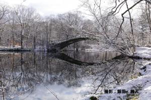 【11月web】『冬まぢか』飯田雅人様