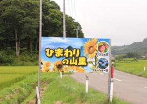 ひまわり畑看板(小)