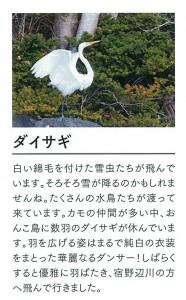 ↑月ごとに野鳥や植物の情報が掲載されています(画像は拡大図※見本)