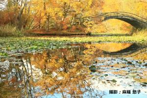 10月麻薙悠子様「秋晴れ散歩」