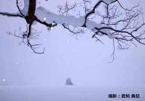 2月武知勇記様「大沼の冬」