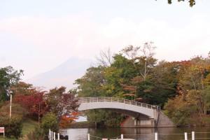 ↑散策路「大島の路」(2017.10.9)