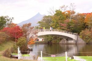 ↑西大島橋。色とりどりです!(2017.10.17)