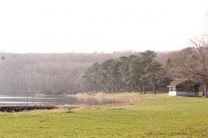 ↑湖畔に面するのどかなキャンプ場です。