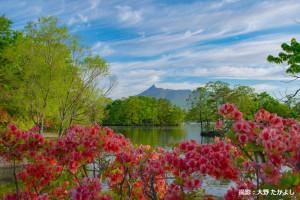 5月大野様 晩春の筋雲(webカレンダー掲載時は名前ひらがなで。