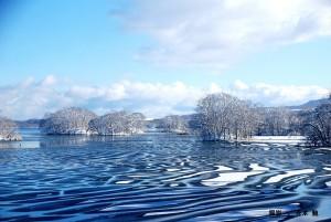 12月青木様 冬間近