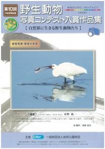 野生動物コンテスト